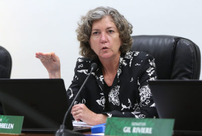 Senator Laura Thielen HTA questioning during joint senate hearing.