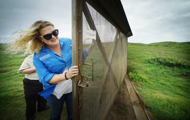 Megan Nagel FWS closes the gate at James Campbell National Wildlife Refuge in Kahuku. There is a stainless steel fenced in area to keep out pests and protect the albatross.